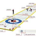 Odborné názvy, ktoré sa v hre používajú. (lonestarcurlingclub.org)