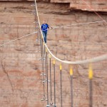 Nik Wallenda v Grand Canyone (si.com)